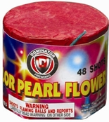 DM-T2507-48-Shot-Color-Pearl-Flower-fireworks